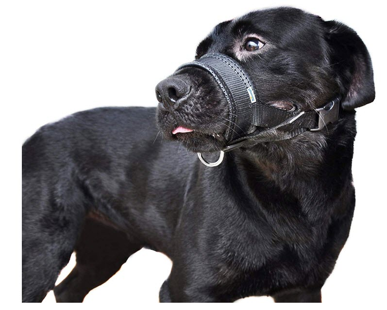 Niteangel Quick Fit Dog Muzzle