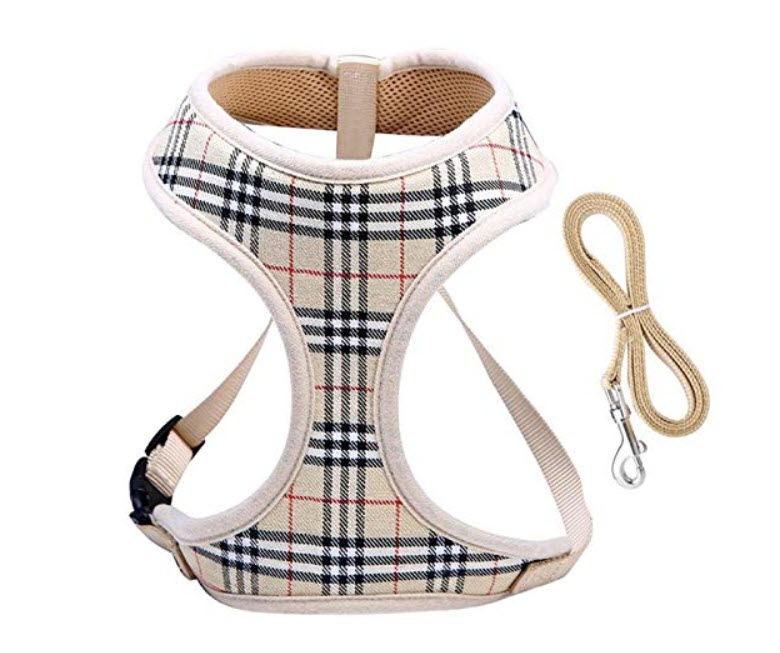 WZPB Harness for Small Dogs