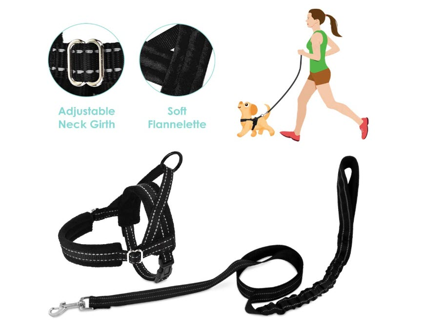 SlowTon No Pull Small Dog Harness and Leash