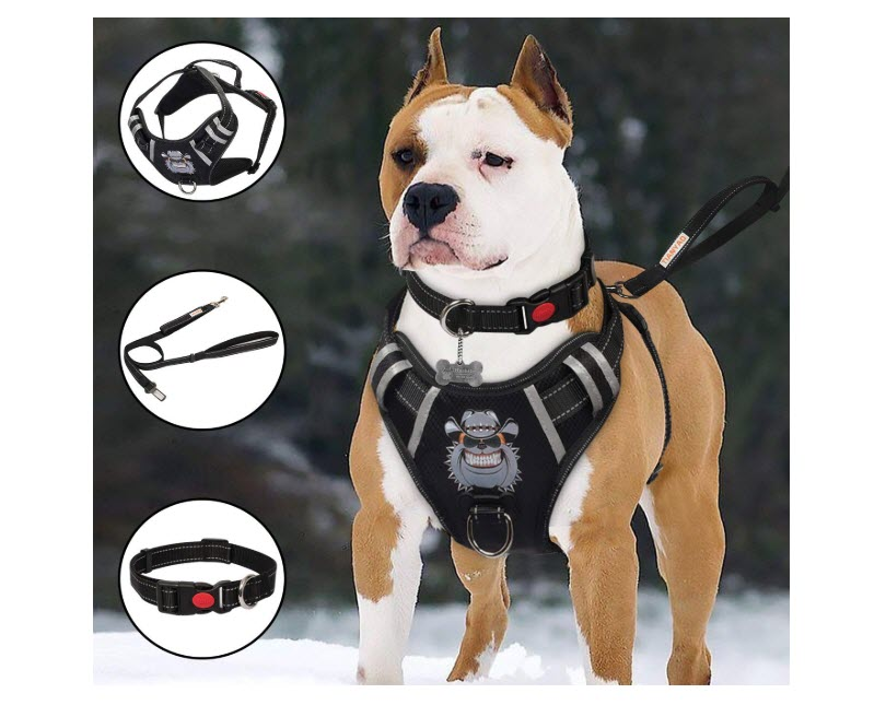 TIANYAO Big Dog Harness No-Pull Dog Vest Set
