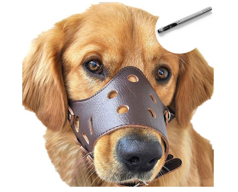 Barkless Leather Dog Muzzle