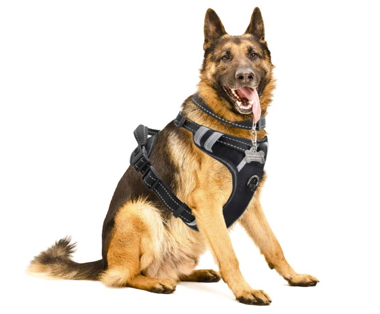 WINSEE Dog Harness No-Pull Pet Harness
