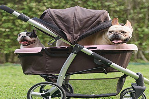 Best Dog Strollers 2019
